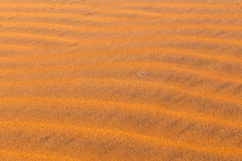 Κύματα αμμόλοφων στην έρημο Σαχάρας στοκ φωτογραφία με δικαίωμα ελεύθερης χρήσης