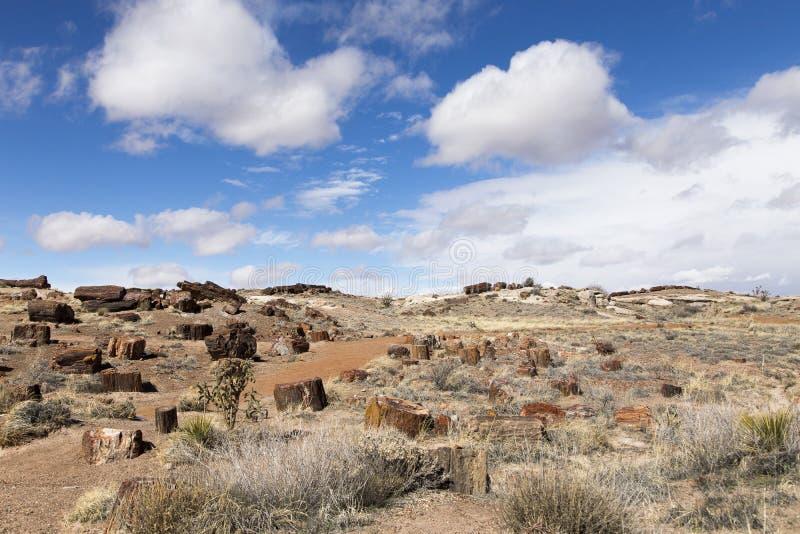 Κόκκινη πορεία ρύπου που κάμπτει μεταξύ των λόφων που καλύπτονται στα χοντρά κομμάτια του πετρώνω? ξύλου στο νότιο μέρος του πετρ στοκ φωτογραφίες