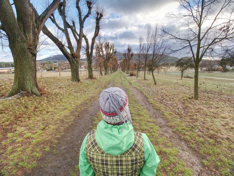 Κυρία ο περίπατος ενδυμάτων στη λεωφόρο δέντρων πτώσης στοκ φωτογραφίες