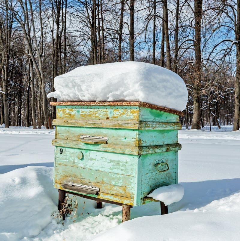 Κυψέλη στο μελισσουργείο το χειμώνα παγετός βαρύς στοκ εικόνα με δικαίωμα ελεύθερης χρήσης
