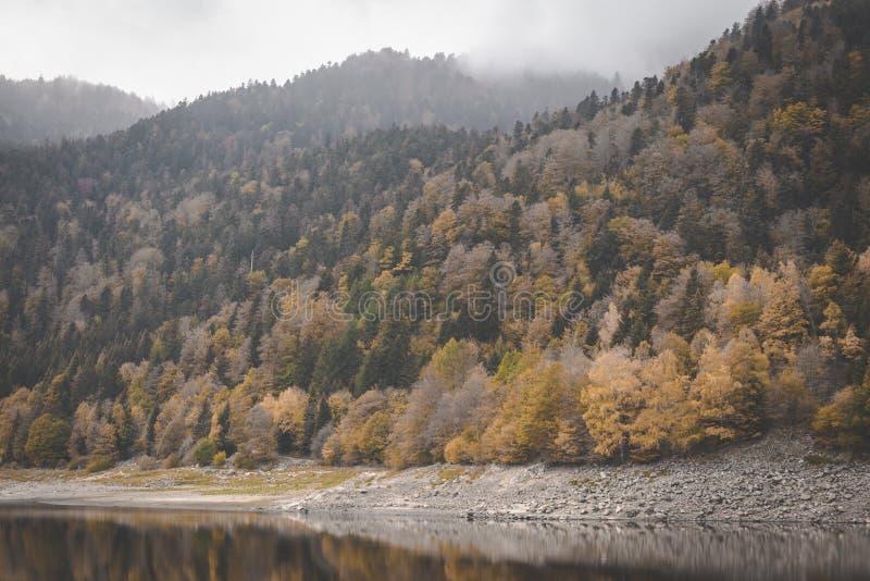 Λίμνη kruth-Wildestein σε Vosges με χαμηλό waterlevel και τα φθινοπωρινά δέντρα στα βουνά σκοτεινοί ευμετάβλητοι ουρανοί στοκ εικόνα με δικαίωμα ελεύθερης χρήσης