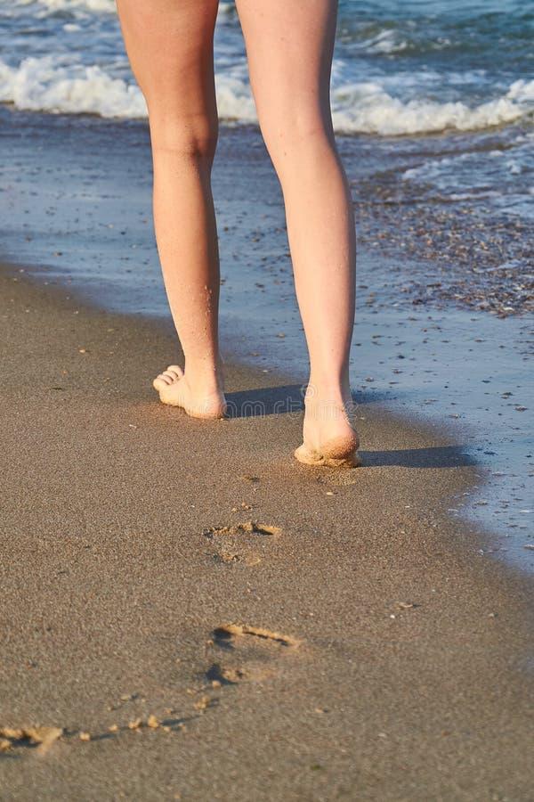 Λαμπρός, τέλειος πληρώνει τη σφραγίδα στην άμμο και η γυναίκα πληρώνει στην παραλία το καλοκαίρι στοκ φωτογραφία με δικαίωμα ελεύθερης χρήσης