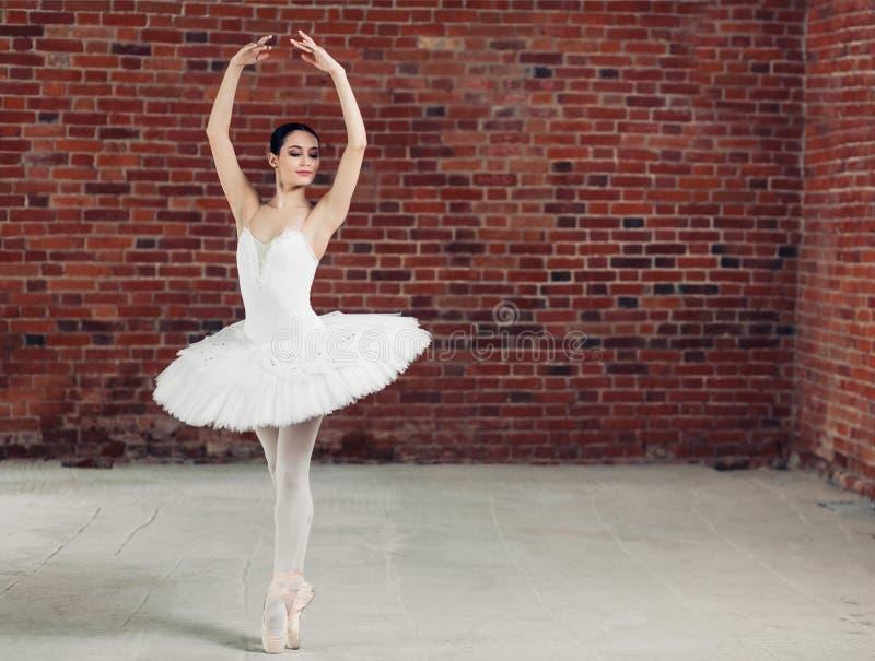 Λεπτή όμορφη τρομερή τοποθέτηση χορευτών στη κάμερα στοκ φωτογραφίες με δικαίωμα ελεύθερης χρήσης