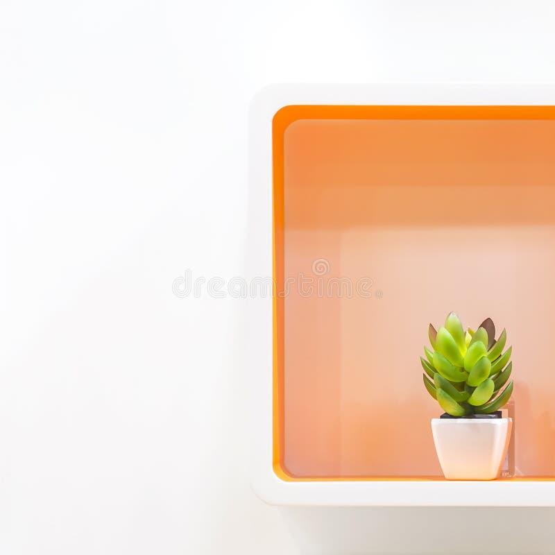 Λεπτομέρειες και στοιχεία σχεδίου του εγχώριων ντεκόρ και του εσωτερικού Καθαρίστε, διατάξτε Γεωμετρικά ράφια στο άσπρο πορτοκάλι στοκ εικόνες με δικαίωμα ελεύθερης χρήσης