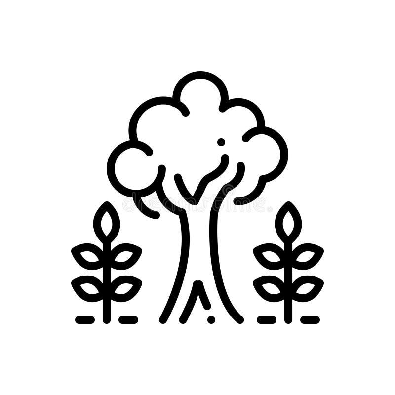 Μαύρο εικονίδιο γραμμών για την ωριμότητα, το δέντρο και τις εγκαταστάσεις διανυσματική απεικόνιση