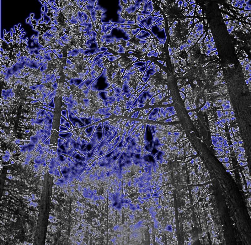 μαύρο μπλε απεικόνιση αποθεμάτων