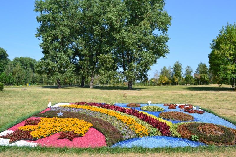 Μεγάλη έκθεση των λουλουδιών στη φύση Μινσκ στοκ φωτογραφία με δικαίωμα ελεύθερης χρήσης