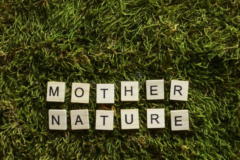 Μητέρα φύση που γράφεται με την ξύλινη κυβισμένη επιστολές μορφή στην πράσινη χλόη στοκ εικόνα