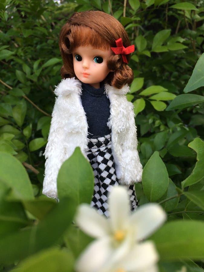 Μια εκλεκτής ποιότητας ιαπωνική κούκλα που ονομάζεται LICCA chan Στέκεται σε έναν φρέσκο πράσινο κήπο στοκ φωτογραφία με δικαίωμα ελεύθερης χρήσης