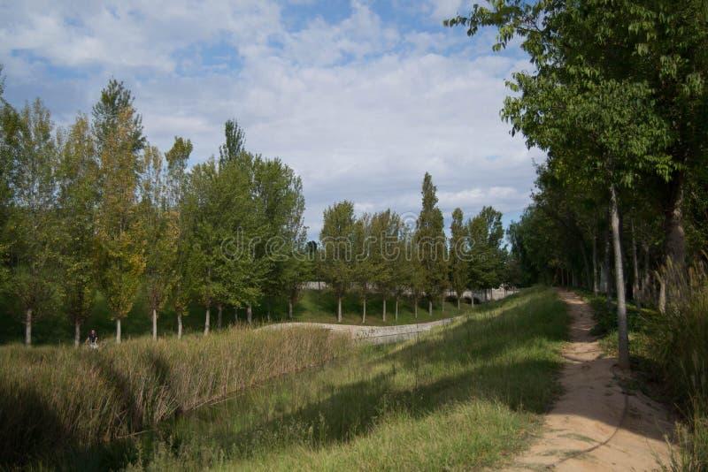 Μια ευθεία πορεία που ακολουθεί στοκ φωτογραφία