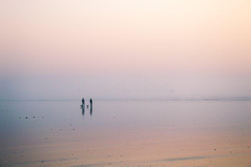 Μια σκιαγραφία ενός ζεύγους που περπατά στην παραλία με δύο σκυλιά σε ένα misty απόγευμα Saunton, Devon, UK στοκ φωτογραφία με δικαίωμα ελεύθερης χρήσης