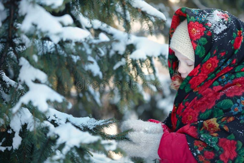 Μικρό κορίτσι στα χιονώδη ξύλα ο μπλε παγετός σκοτεινής μέρας κλάδων βρίσκεται χειμώνας δέντρων χιονιού ουρανού στοκ φωτογραφία με δικαίωμα ελεύθερης χρήσης