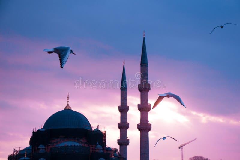 Μιναρές των οθωμανικών μουσουλμανικών τεμενών κατά την άποψη στοκ φωτογραφίες