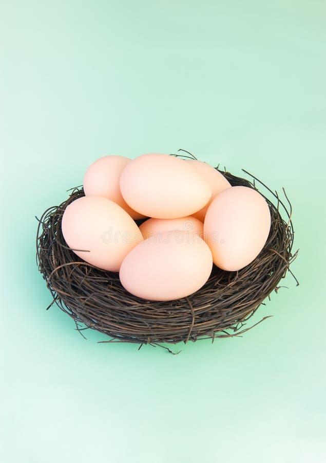 Μπεζ αυγά στη φωλιά των κλάδων στοκ φωτογραφία με δικαίωμα ελεύθερης χρήσης