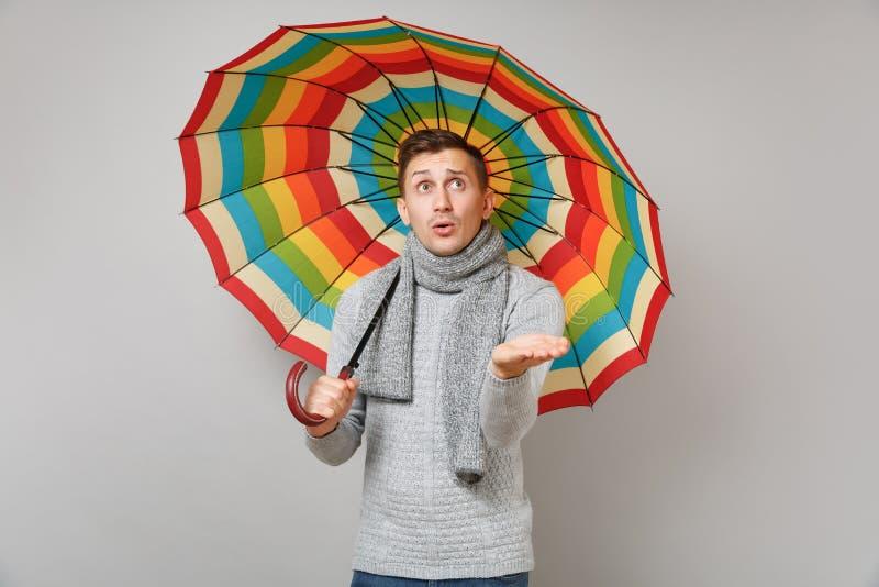 Μπερδεμένος νεαρός άνδρας στο γκρίζο πουλόβερ, μαντίλι που δείχνει το χέρι που κρατά τη ζωηρόχρωμη ομπρέλα στο γκρίζο υπόβαθρο Υγ στοκ εικόνες με δικαίωμα ελεύθερης χρήσης
