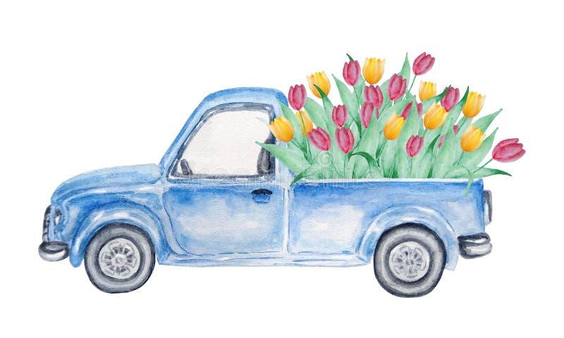 Μπλε αυτοκίνητο Watercolor με τις τουλίπες ελεύθερη απεικόνιση δικαιώματος