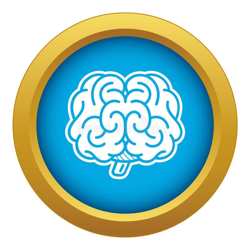 Μπροστινό μπλε διάνυσμα εικονιδίων εγκεφάλου που απομονώνεται ελεύθερη απεικόνιση δικαιώματος