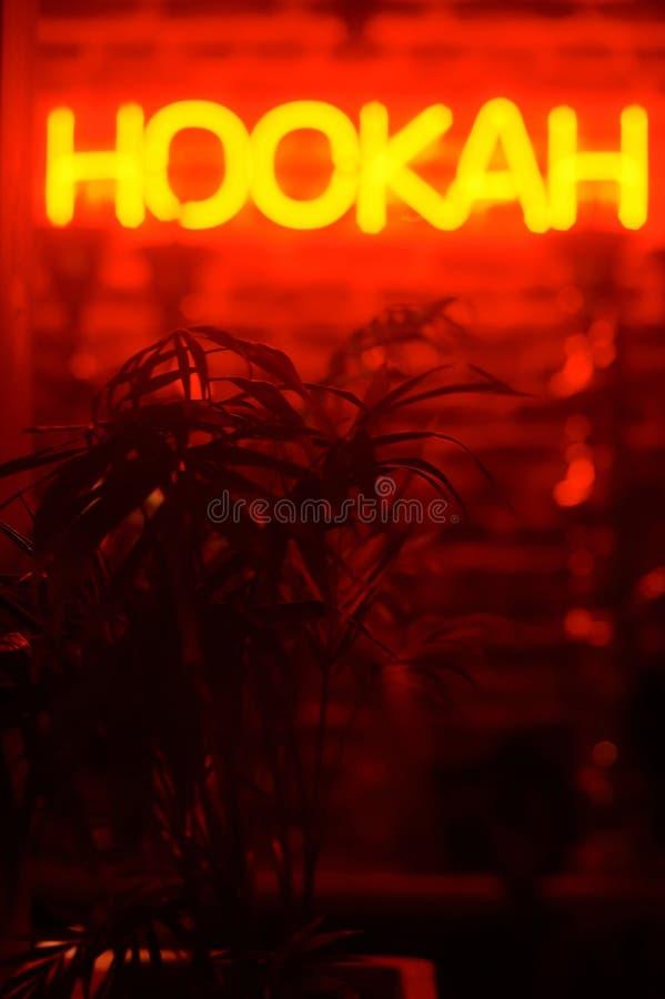 Νέο hookah sighnboard φυτό τροπικό στοκ εικόνες
