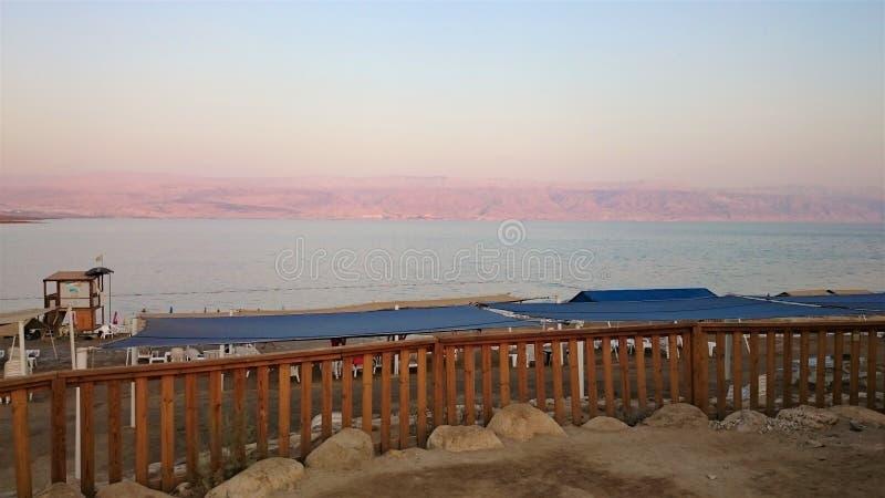 Νεκρή αλμυρή ακτή θάλασσας άγριο δάσος τραγουδιού φύσης αγάπης αγριόγαλλων τοπίο τροπικό Καλοκαίρι στοκ εικόνα με δικαίωμα ελεύθερης χρήσης
