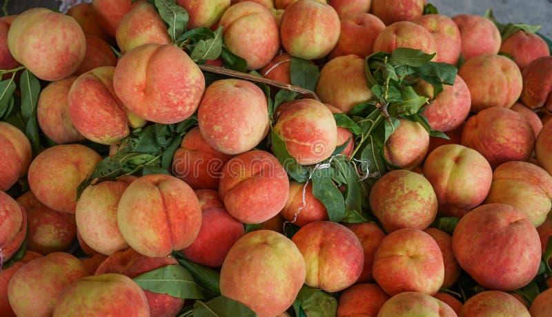 Νεκταρίνια στην επίδειξη στο κατάστημα φρούτων στοκ φωτογραφία με δικαίωμα ελεύθερης χρήσης