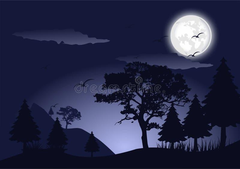 Νύχτα σκιαγραφιών στη δασική διανυσματική εικόνα τοπίων απεικόνιση αποθεμάτων
