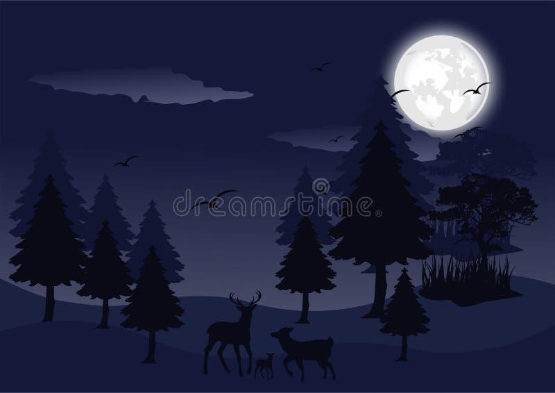 Νύχτα σκιαγραφιών στη δασική διανυσματική εικόνα τοπίων διανυσματική απεικόνιση