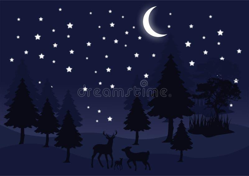 Νύχτα σκιαγραφιών στη δασική διανυσματική εικόνα τοπίων ελεύθερη απεικόνιση δικαιώματος
