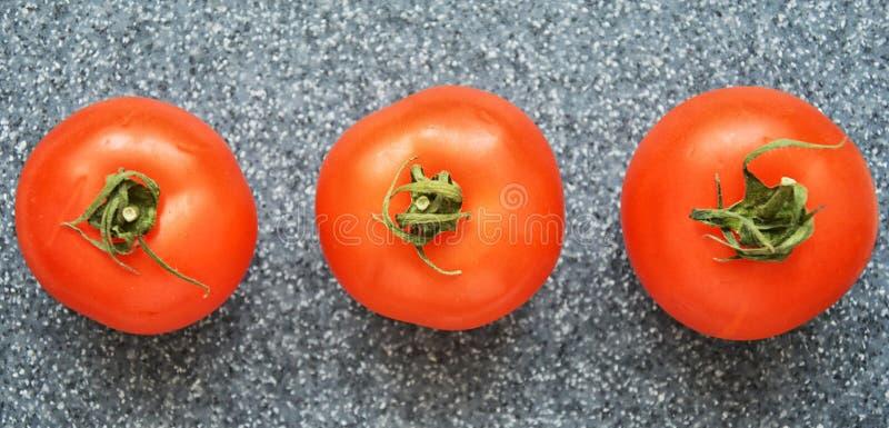 Ντομάτες στο γκρίζο υπόβαθρο στοκ φωτογραφία με δικαίωμα ελεύθερης χρήσης