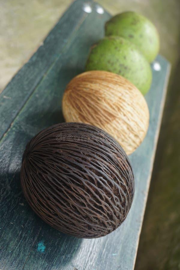 νωποί καρποί και φρούτα γκοϋαβών στοκ εικόνα με δικαίωμα ελεύθερης χρήσης