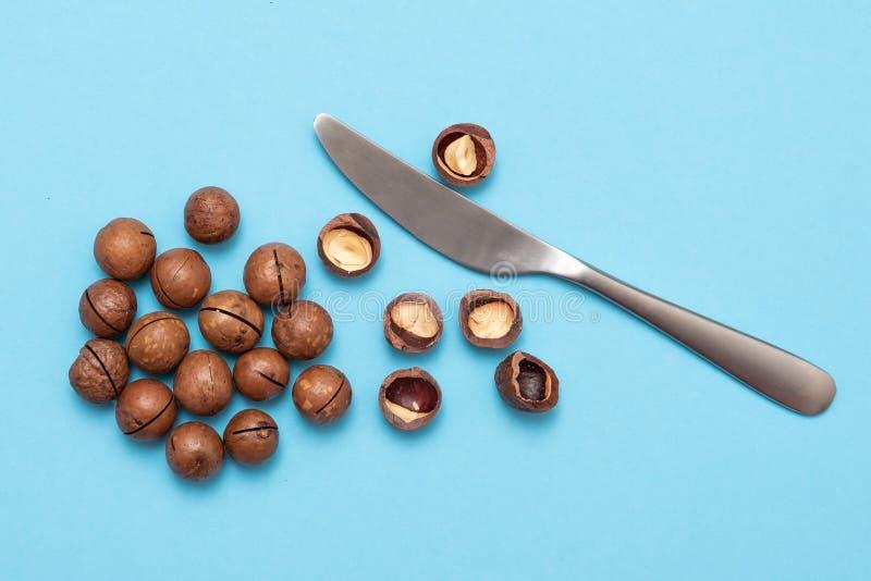 Ξεφλουδισμένα και unshelled macadamia καρύδια στο μπλε υπόβαθρο στοκ φωτογραφίες με δικαίωμα ελεύθερης χρήσης