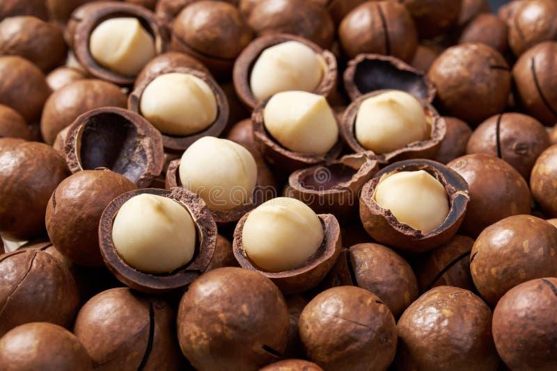 Ξεφλουδισμένη και unshelled macadamia κινηματογράφηση σε πρώτο πλάνο υποβάθρου καρυδιών στοκ εικόνες
