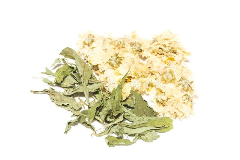 Ξηρά χρυσάνθεμο και Stevia στο άσπρο υπόβαθρο στοκ φωτογραφίες με δικαίωμα ελεύθερης χρήσης