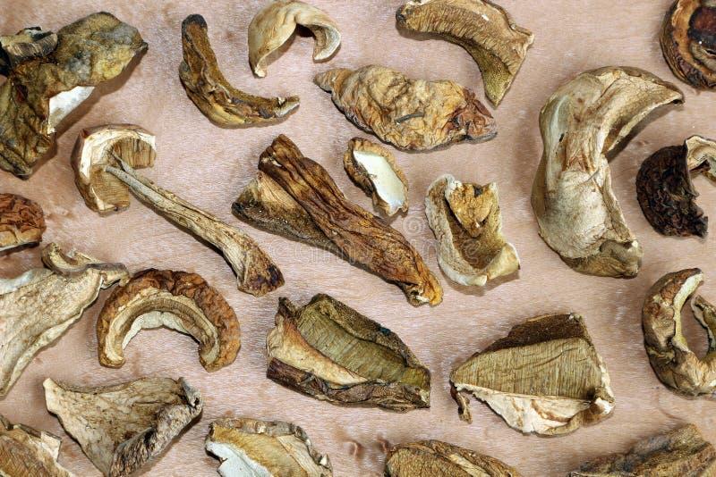 ξηρό porcini μανιταριών στοκ εικόνες