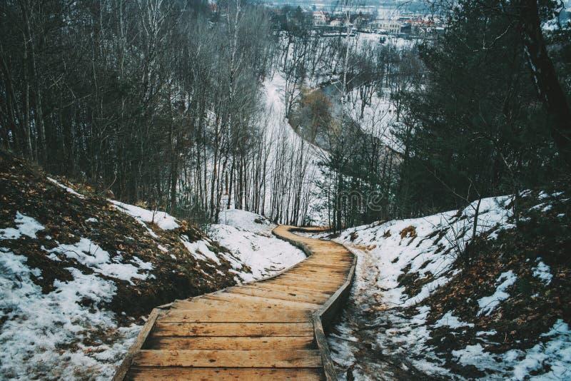 Ξύλινα σκαλοπάτια στο χιονώδες ξύλο στοκ εικόνες