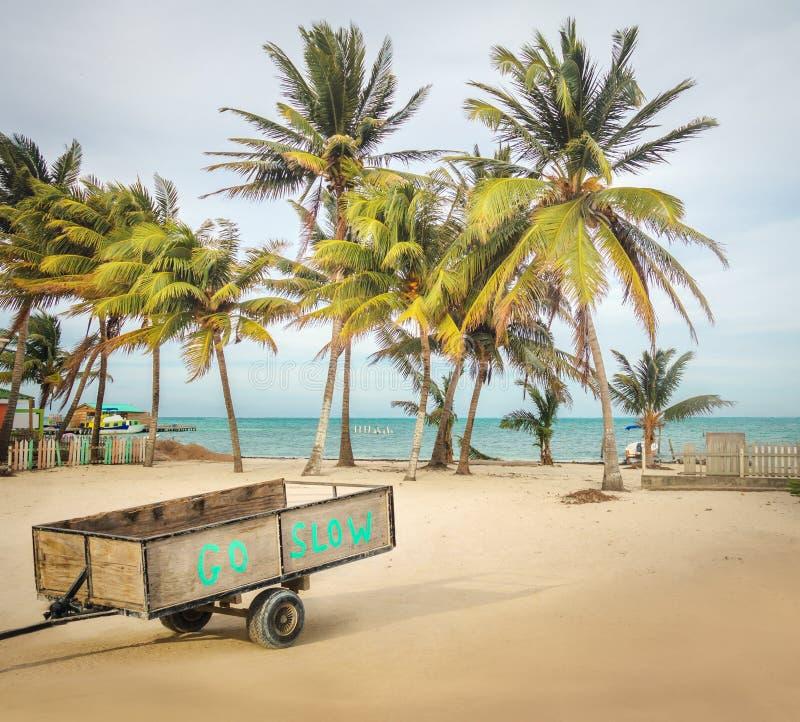 Ξύλινο κάρρο με Go το αργό μήνυμα σε μια τροπική παραλία με τους φοίνικες - καλαφάτης Caye, Μπελίζ στοκ φωτογραφία με δικαίωμα ελεύθερης χρήσης