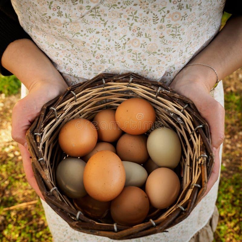 Ξύλινο σύνολο καλαθιών της λαβής αυγών με το χέρι στοκ φωτογραφίες με δικαίωμα ελεύθερης χρήσης
