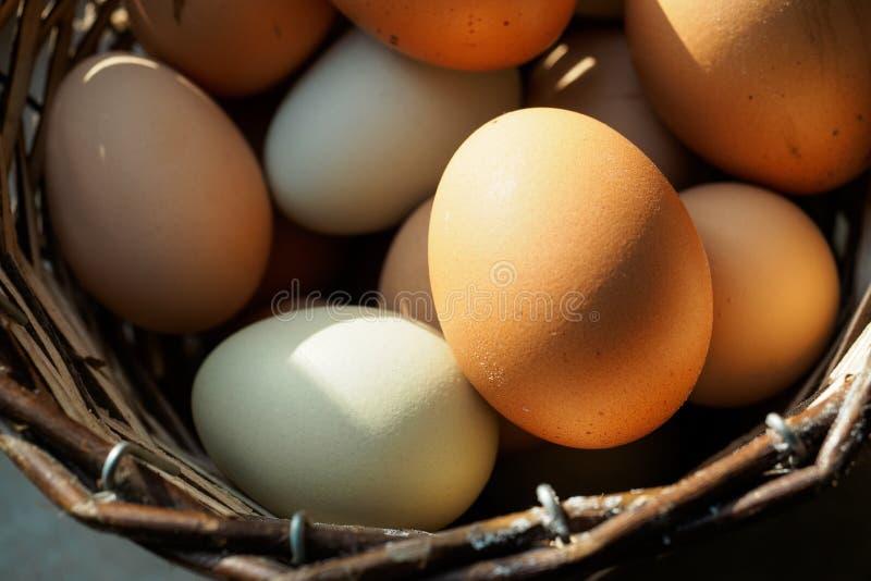 Ξύλινο σύνολο καλαθιών των αυγών στοκ φωτογραφία