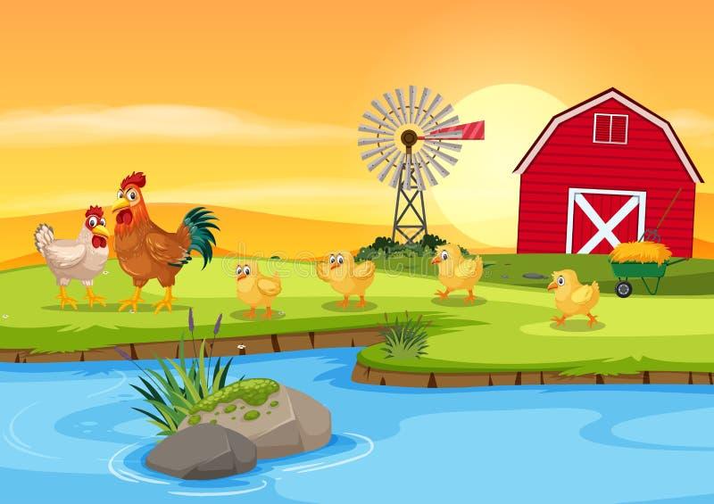 Οικογένεια κοτόπουλου στο αγρόκτημα ελεύθερη απεικόνιση δικαιώματος