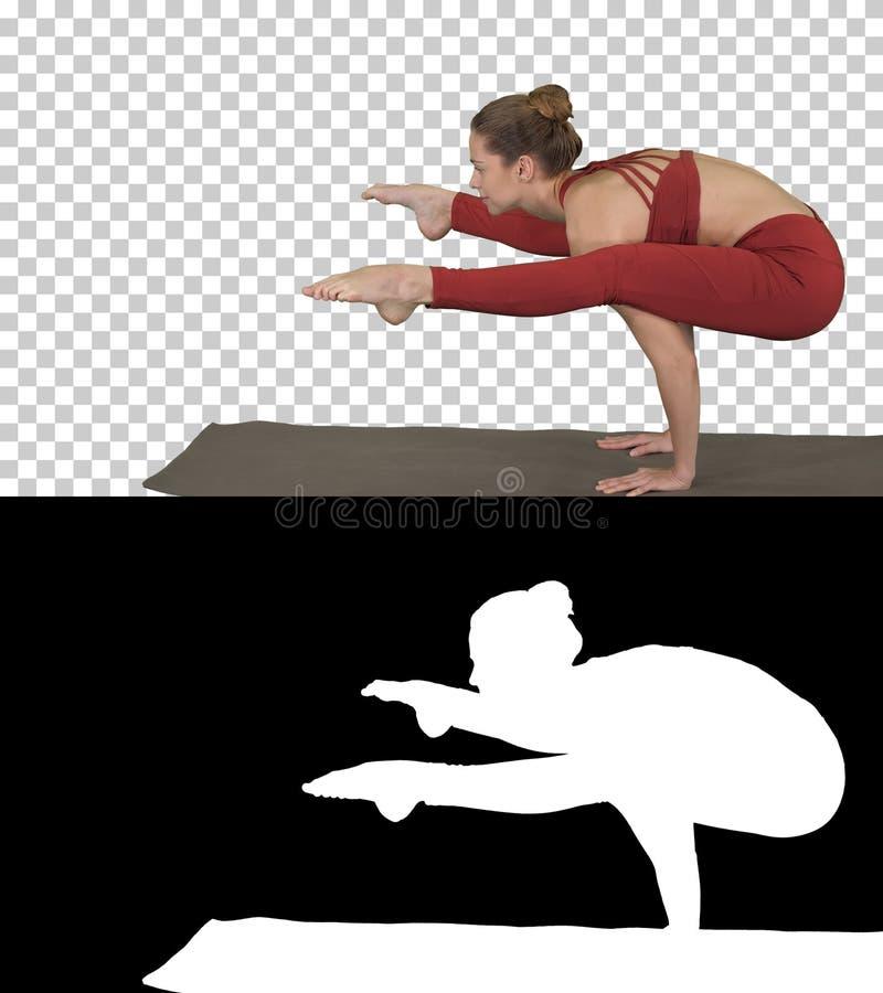 Οι όμορφες νεολαίες εγκαθιστούν τη γυναίκα που φορά sportswear που κάνει handstand, παραλλαγή της στάσης Firefly, Tittibhasana, ά στοκ εικόνες με δικαίωμα ελεύθερης χρήσης