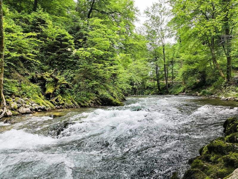 Οι ποταμοί του vintgard στοκ φωτογραφίες
