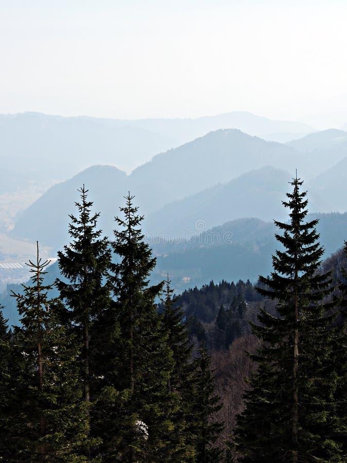 Ομιχλώδη βουνά μια ηλιόλουστη ημέρα στοκ εικόνα