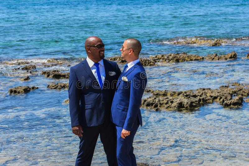 Ομοφυλοφιλικό ζεύγος LGBT που παντρεύεται στοκ εικόνες με δικαίωμα ελεύθερης χρήσης