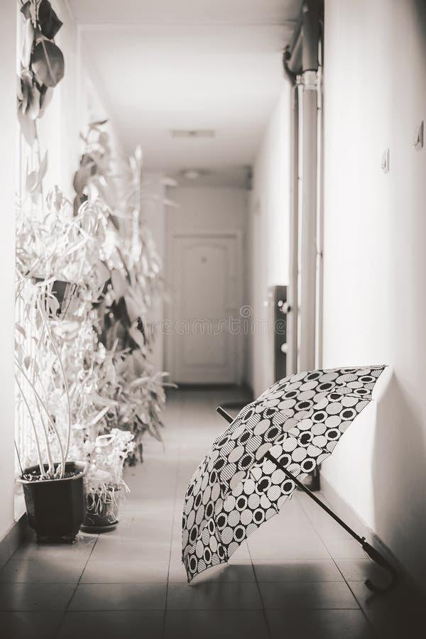 Ομπρέλα στην αίθουσα στοκ εικόνα με δικαίωμα ελεύθερης χρήσης
