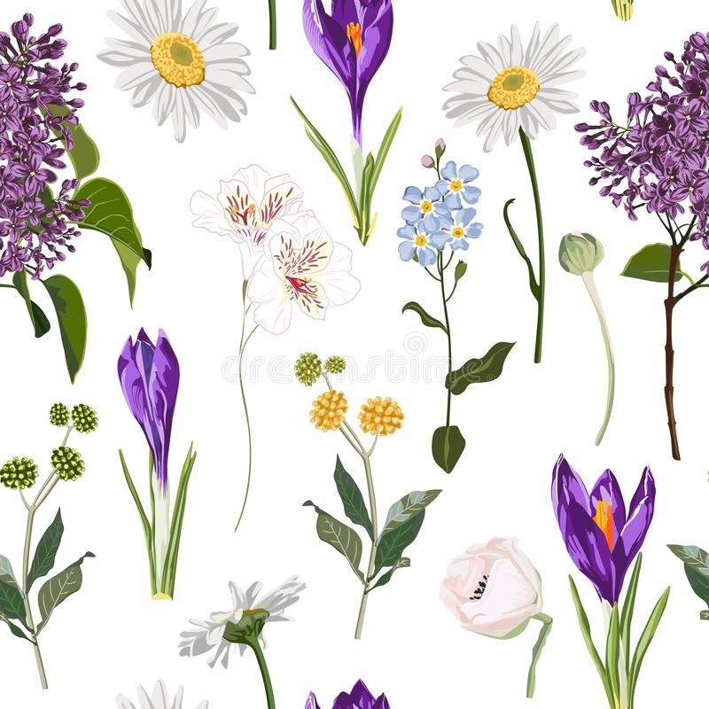 Ο άνευ ραφής floral ιώδης κρόκος και πολύ είδος άνοιξη ανθίζουν το άνευ ραφής σχέδιο στο εκλεκτής ποιότητας άσπρο υπόβαθρο ελεύθερη απεικόνιση δικαιώματος
