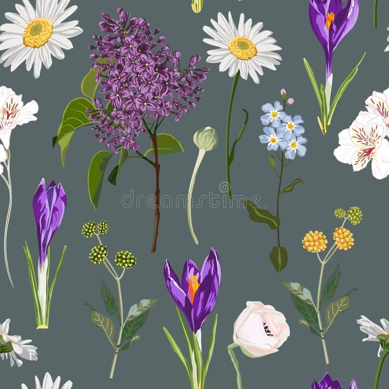 Ο άνευ ραφής floral ιώδης κρόκος και πολύ είδος άνοιξη ανθίζουν το άνευ ραφής σχέδιο στο εκλεκτής ποιότητας σκοτεινό υπόβαθρο διανυσματική απεικόνιση