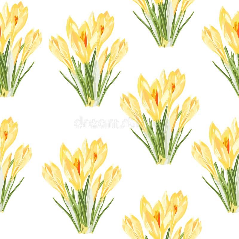 Ο κίτρινος κρόκος ανθίζει το άνευ ραφής σχέδιο ανθοδεσμών Απεικόνιση ύφους Watercolor ελεύθερη απεικόνιση δικαιώματος