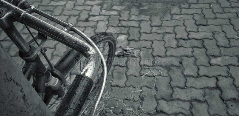 Ο κύκλος στοκ φωτογραφίες με δικαίωμα ελεύθερης χρήσης
