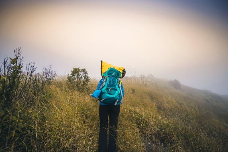 Ο τουρίστας της Ασίας νεαρών άνδρων φίλτρων Instagram στο βουνό προσέχει κατά τη διάρκεια του misty και ομιχλώδους πρωινού στοκ εικόνα