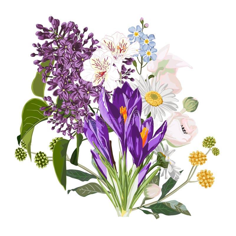 Ο πορφυρός κρόκος άνοιξη ανθίζει την ανθοδέσμη με τα χορτάρια κήπων, ιώδης, chamomile, anemones στο άσπρο υπόβαθρο απεικόνιση αποθεμάτων