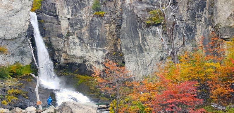 Δέντρα με τα χρώματα φθινοπώρου και καταρράκτες στην Παταγωνία στοκ φωτογραφίες με δικαίωμα ελεύθερης χρήσης